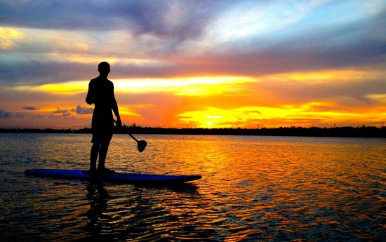 CC Kayak Adventures: Sunrise/Sunset Tours