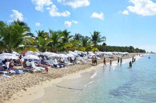 Playa Mia Grand Beach Park Chairs And Umbrellas At