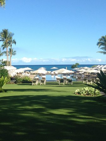 Four Seasons Resort Hualalai: Beach Tree Pool