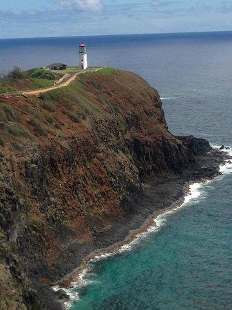 Kilauea Point National Wildlife Refuge: birds nest in cliffside burrows