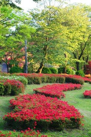 Shiibae Park