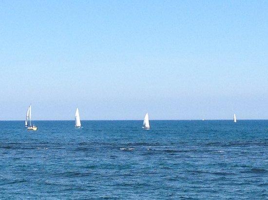 Blue Harbor Resort: Beautiful views along the beach & harbor area