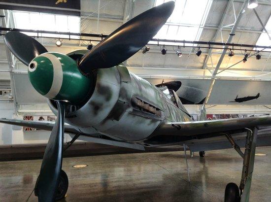 Flying Heritage & Combat Armor Museum : DORA D-13