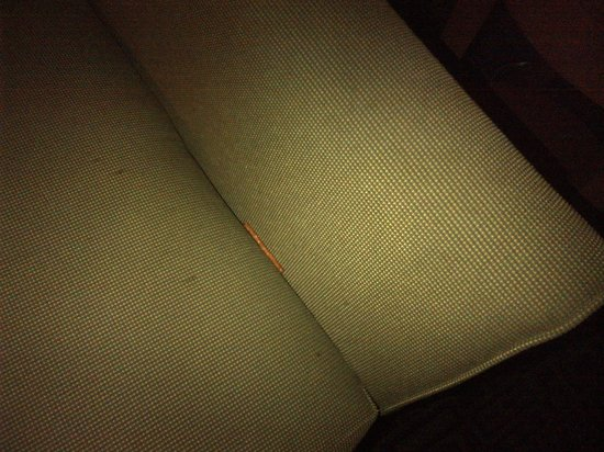 SpringHill Suites Albany-Colonie: pretzel stick on sofa