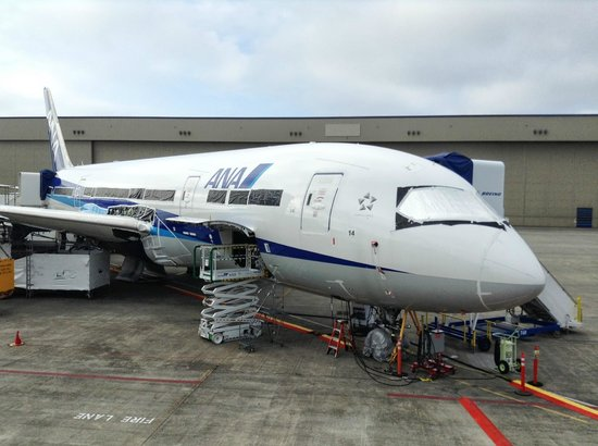 Future of Flight Aviation Center & Boeing Tour: ANA 787
