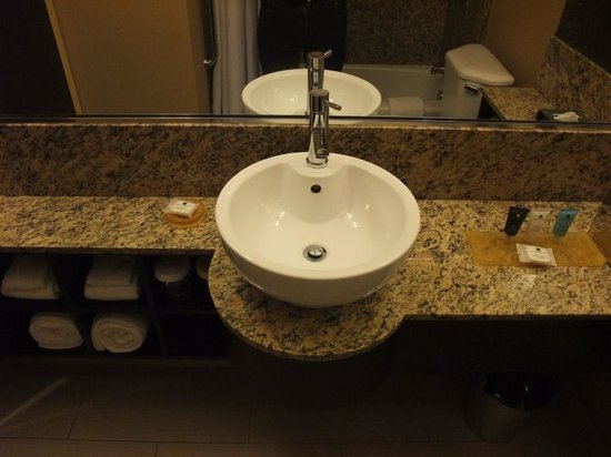 Crowne Plaza Chicago O'Hare Hotel & Conference Center: Unusual Sink