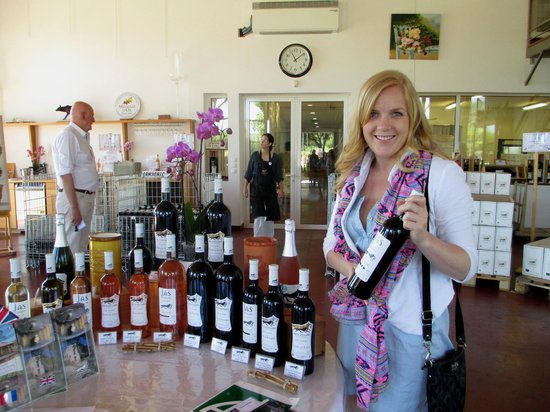 Azur Wine Tours : Learning about the wines