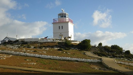 Cape Borda Lightstation: Lighthouse - the main attraction
