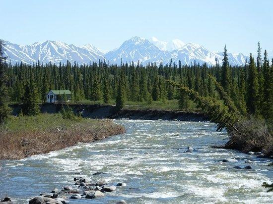 Alaska Denali Tours Review