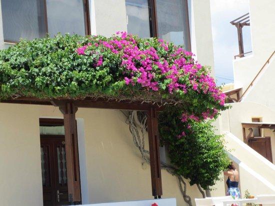 Hotel Mathios Village: Überall blühende wunderschöne Pflanzen