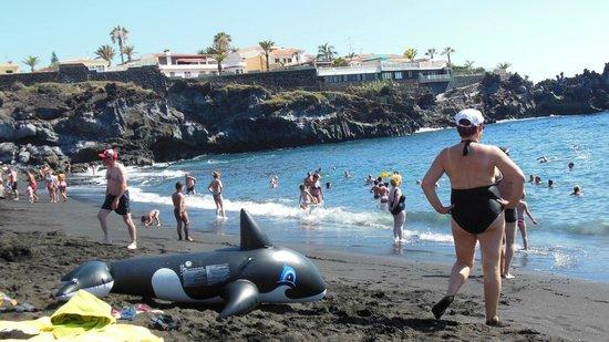 Blue Sea Lagos De Cesar Hotel Puerto De Santiago Tenerife