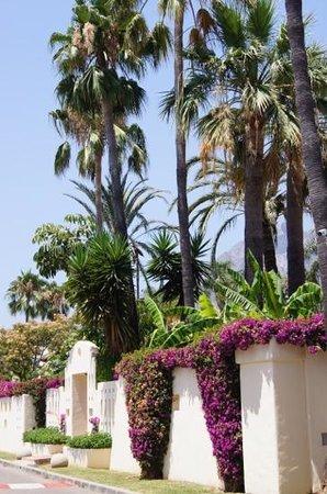 Guadalpin Suites: дорога от отеля к пляжу