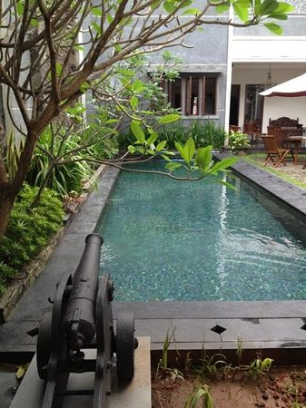 Shraya Residence: Cannon and pool