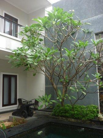 Shraya Residence : cannon and pool