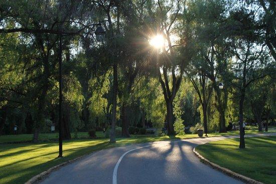 Polson Park: at the park