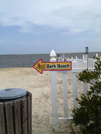 Castaways RV Resort & Campground : Bark Beach