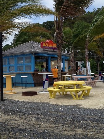 Castaways RV Resort & Campground : Tiki Bar
