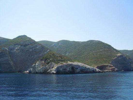 Monk Seal near Steni Vela - Picture of National Marine ...