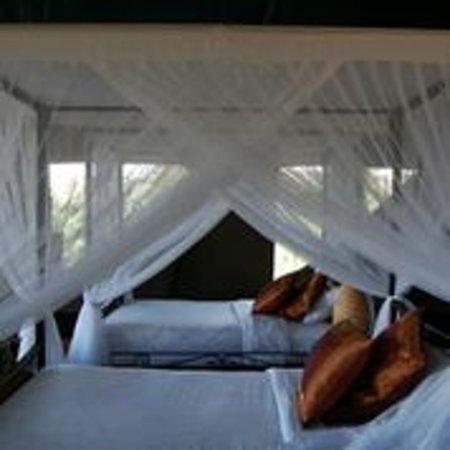 Ngorongoro Wildcamp: Luxury Tents
