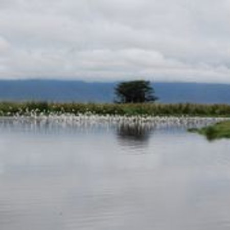 Ngorongoro Wildcamp: View of Lake eyasi from the camp