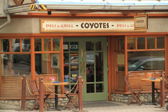 Coyotes Southwestern Grill : Coyotes Restaurant