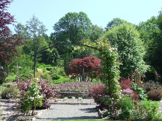Cae Hir Gardens: Near the tearoom