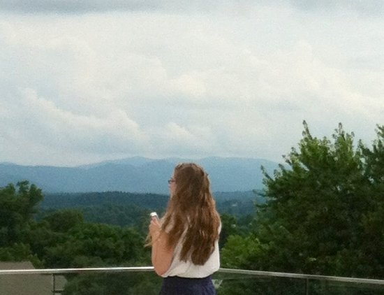 Aloft Asheville Downtown: View from Aloft rooftop pool-