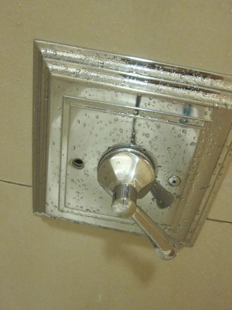 The Saratoga Hilton: Missing screw in shower fixture
