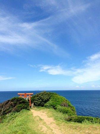 Sakyobana: 神社もあります