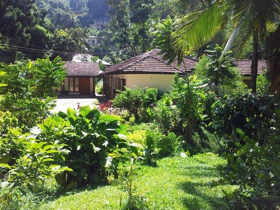 Clove Garden Kandy City: The Clove Garden (Side View)