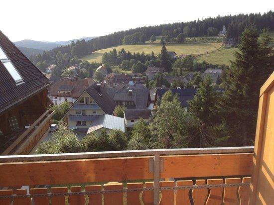 Hotel Schlehdorn: vue de la chambre