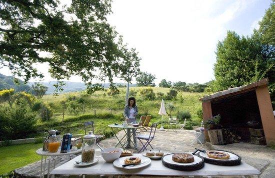 La Zuppa Inglese B&B: La colazione