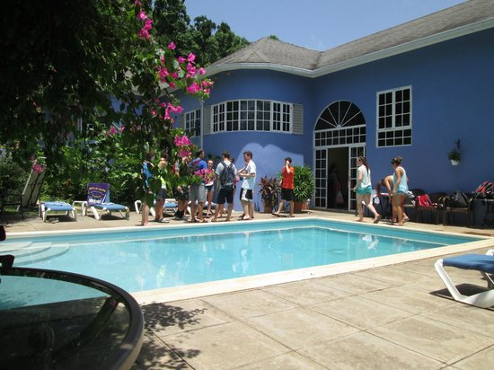 The Blue House Boutique Bed & Breakfast: Blue House pool