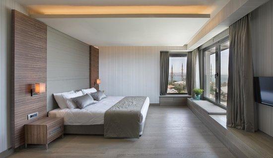 Hotel Arcadia Blue: Room