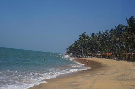 Sanmali Beach Hotel: The Beach (hotel in the background)