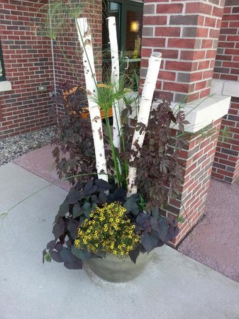 AmericInn Lodge & Suites Lincoln South: Beautiful planter outside the hotel