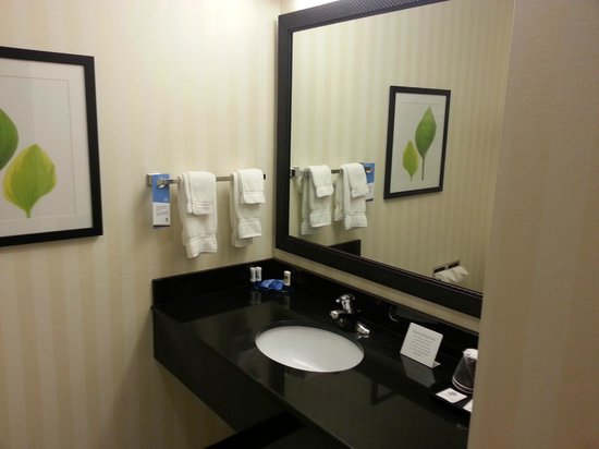 Fairfield Inn & Suites by Marriott Harrisburg West : Bathroom Sink