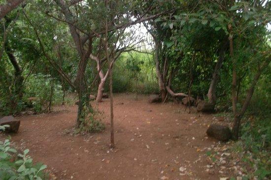 Kirurumu Manyara Lodge: exterior