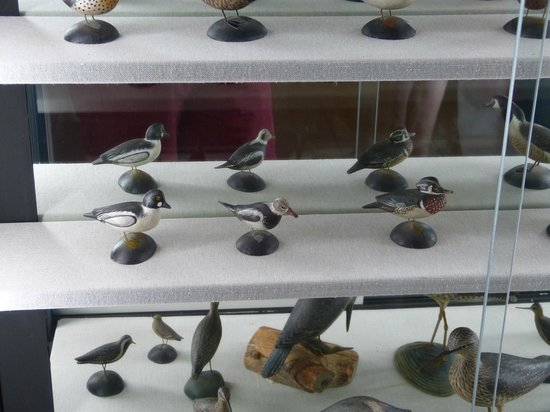 Atwood House & Museum : Part of the Minature Decoy Collection