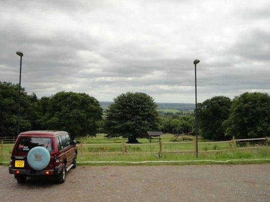 Hotels Near Dartmoor Zoo