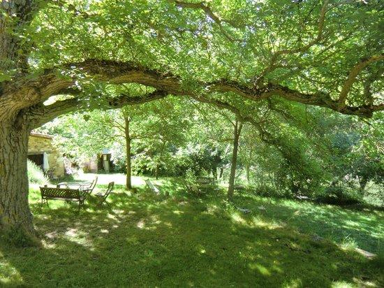 Posada Molino del Canto: The garden