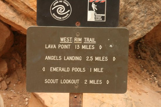 Angel's Landing: It's a decent hike - strenuous because it is steep