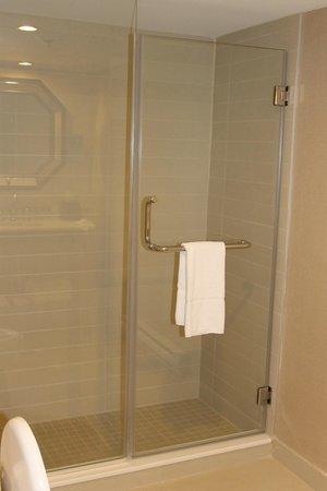 Sheraton Montreal Airport Hotel: Shower