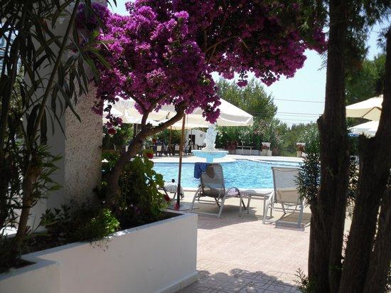 Appartamenti Barbarroja: vista della piscina dal patio dell'app.