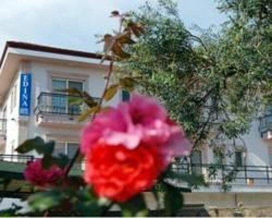 Photo of Edina Hotel Ayvalik