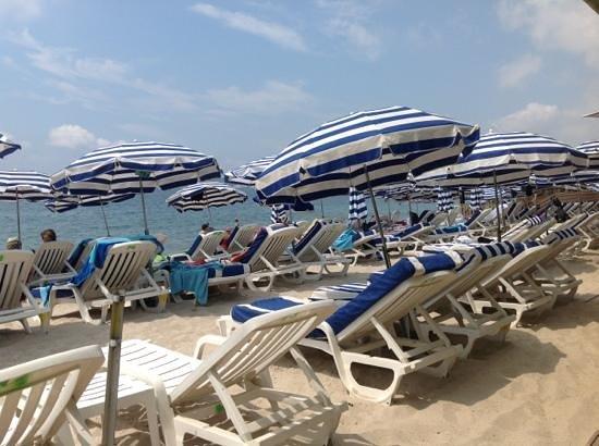 Hotel Villa Nina: один из платных пляжей