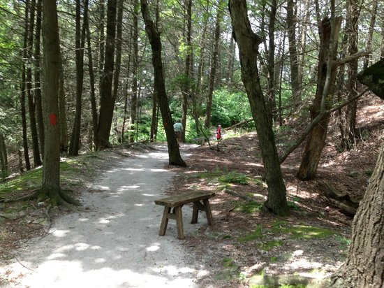 Hawk Mountain Sanctuary: the difference of the easy lookout trail