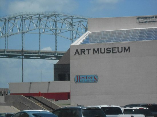 South Texas Institute for the Arts: The Bridge