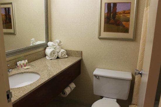 Holiday Inn Cincinnati Riverfront: The sink area