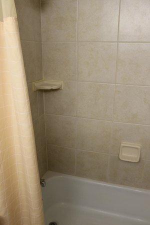 Holiday Inn Cincinnati Riverfront: Shower / bath